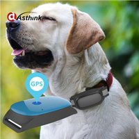 Wholesale wireless security devices for sale - Hot sell AS20 Mini Wireless GPS Locator Tracking Pet Dog collar Tracker GSM GPRS Security Auto Tracking Device Support Android