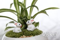 ingrosso mini figurine animali-Resina Handmade all'ingrosso Mini coniglio Animale Craft Moss Terrarium Decor Cartoon Figurine Accessori Miniature Bonsai Pot Decorazione