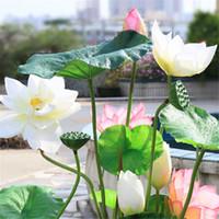 ingrosso piante da giardino decorazione-Fiore di loto artificiale schiuma pianta europea st fresco stile pastorale casa giardino decorazione hotel stagno scenario decor