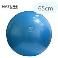ticari uyuşur toptan satış-65 cm Ticari Jimnastik Fitness Pilates Denge Egzersiz Salonu Fit Yoga Çekirdek Topu Kapalı Spor Eğitimi Yoga Topu Ücretsiz Pompa