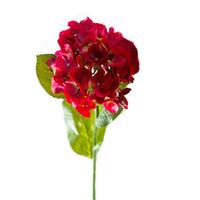 Wholesale silk hydrangea stems wholesale - 24.4''tall hydrangea single head 7.8'' bloom dia hot red stem 2018 new silk wedding flower wholesale for garden wedding decoration