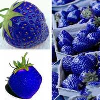 erdbeere liefert großhandel-Neueste Obst Samen Blau Erdbeere Samen DIY Garten Obst Samen Topfpflanzen Garten Liefert I181