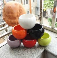 ingrosso mini piatto di fiori bianchi-Vasi in ceramica Succulente Vaso di fiori Piccola palla Bianco rotondo in porcellana bianca Colore Mini Creative Free DHL 218