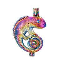 lagartos de metal al por mayor-5 unids Rainbow Color Lagarto Perla Jaula Perlas Jaula Aceite Esencial Difusor Medallón Colgante de Joyería de DIY que hace Oyster Perla regalos