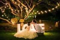 luces de hadas led conectables al por mayor-Conectable Festoon led globe led wedding fairy string light 20 LED bulb Light Christmas fairy light jardín colgante guirnalda