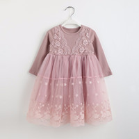 Wholesale cute casual dresses for winter resale online - Autumn winter Girls Dress Casual Long Sleeves laceMesh Kids Dresses For Girl Autumn Clothing Cute Princess Dress