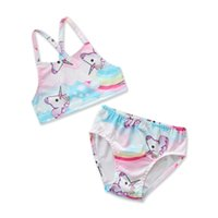 ingrosso costume rosa bikini-2018 Summer New Unicorn Pattern Pink Blue Swimsuit Girls Cute Unicorn Vest Shorts Two-piece Split Swimsuit Chinldren's Clothing Girls Bikini