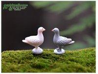 ingrosso gnomi da giardino-10 pz colomba figurine uccelli Animali Giocattoli Ornamento fata giardino miniature gnome moss terrario arredamento artigianato bonsai home decor Zakka