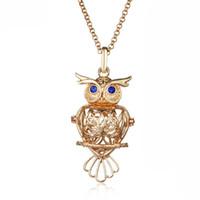 ingrosso collane di birdcage-Collana con pendente per uccelli con cono gufo Accessori per perle con olio essenziale medaglione Collana con pendente con gabbia medaglione