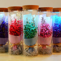 Wholesale forget gifts for sale - 2018 Valentine s Day Dried Flowers Babysbreath Forget Me Not LED Controller Flashing Flower Gift for Lover with Glass Cups
