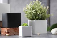 planta branca para decoração de casa venda por atacado-Suculentas potes de Moda decorativa Simples plantadores de vasos de flores preto branco planta suculenta em vasos sobre a mesa de decoração para casa Três tamanhos