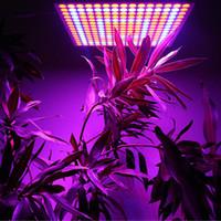 ingrosso il giardino interno ha portato a crescere le luci-65W LED coltiva la lampada dell'interno della serra delle luci della lampada 225 LED casa giardino idroponico crescente che coltiva la luce della pianta del fiore