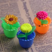 Wholesale magic flower plant for sale - Group buy Four Seasons Flowers Magical Inflated Plant Three Dimensional Magic Flower Growing In Water Novelty Valentine Day Gift hq W