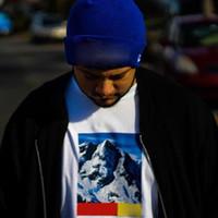 kutu karikatürleri toptan satış-17FW N F x S Dağ TEE Kutusu logosu Hip Hop Comics Baskılı Kaykay Serin T-shirt Erkek Kadın Pamuk Rahat Karikatür T-Shirt HFLSTX028