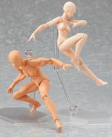 ingrosso corpo anime-Anime Figma Archetipo He She Ferrite Figma Corpo mobile Kun Corpo Chan Action PVC Figure Modello Giocattoli Bambola per azione Collezionabile