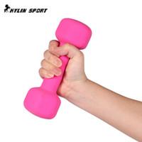 Wholesale fitness equipment women - Body slimming Weight Women's Sport Dumbbell Yoga Fitness Equipment Women Fitness 0.5kg*2 Dumbbells