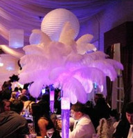 boule d'autruche achat en gros de-Plume de plume d'autruche de couleur blanche de haute qualité 10-12 pouces pour la décoration de table de fête de mariage de boule de fleur de table z134