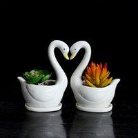 ingrosso mini piatto di fiori bianchi-2pcs / Set Swan White Planter in ceramica per piante grasse decorativo Piante grasse da giardino Mini Flower Pot Decorazione del giardino di casa