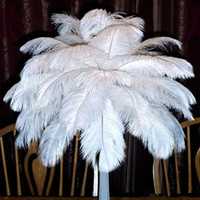 Wholesale police cards - Beautiful Marabou Feathers For DIY Bridal Wedding Crafts Millinery Card Decorate Wedding Ostrich Feathers Wedding Decoration Supplies
