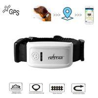 china kostenlos foto großhandel-Lange Standby-Zeit TK909 Katze Hund Haustiere Echtzeit GPS-Tracker Globale GSM GPRS Locator IOS / Andriod App Kostenloser Website-Service