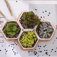 Set Of Modern Hexagon Flowerpots Blanco cerámica suculenta maceta con soporte de bambú Bonsai jardinera Garden Supply Home Decor