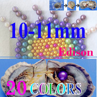 Wholesale aa circle - free shipping 6pcs giant 10 -11mm Colored Edison round grade AA pearl in oyster with vacuum packing 01