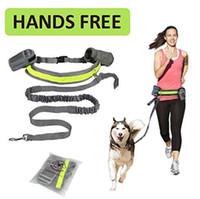 köpek evcil hayvan egzersiz pedleri toptan satış-Eller Serbest Pet Köpek Kedi Koşu Koşu Yastıklı Bel Kemeri Yansıtıcı Şerit Elastik Tasma Mükemmel Yürüyüş Eğitim Köpek Tasma Set