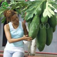 sacs de géants achat en gros de-Graines de papaye géante Nouvelle arrivée Bonsaï Graines de légumes biologiques pour le jardin domestique 30 particules / sac
