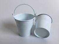 jardim de baldes de lata venda por atacado-D7 * H7CM (D2.7 * H2.7 polegada) Vasos de jardim plantador balde caixa de lata de ferro panelas de metal baldes de semente decorativa Branco