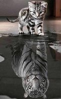 Wholesale Painting Tigers - 5D DIY Diamond Painting Kit Magic Square Drill Cat Reflection Tiger 2.8 Spire Complete Diamond Embroidery Decoration Painting