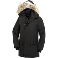 ceket dhl toptan satış-DHL Freeshipping Marka erkek Parka Aşağı Ceket Parka Kış Sıcak Kalın Aşağı Palto Kapşonlu Kürk Yaka DownJackets