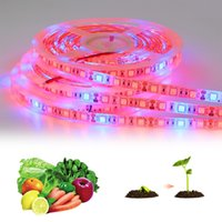 ingrosso piante blu-Red Blue Full Spectrum 5M 5050 LED Strip Indoor Plants Coltiva la luce LED Phyto Lamp Greenhouse Hydroponic Plants Veg Crescita dei fiori