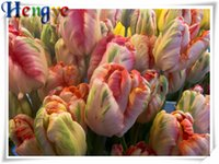 Wholesale Tulips Painting Abstract - Diy diamond painting cross stitch kit rhinestone mosaic home decor gift flower pink tulip full round&square diamond 5D embroidery yx2433