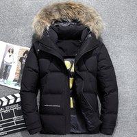 erkekler iş parkı toptan satış-2017 Kalın Sıcak Kış erkek Aşağı Ceket Yüksek Kalite Lüks Rakun Kürk Yaka Kapşonlu Parka hombre Erkekler Iş Rahat Ceket