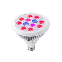 high par led wachsen lichter großhandel-LED-wachsende Lichter E27 12W 24w LED-Anlage wachsen Hochleistungsglühlampe-Innenanlagen-Wachstum wachsen Lichter Downlight mit CER ROHS bestätigt