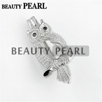 Wholesale pearl cubic jewelry pendants resale online - HOPEARL Jewelry Owl with Cubic Zirconia Wishing Pearl Gift Silver Pearl Cage Pendant Pieces