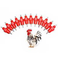 tazas de pollo abrevadero al por mayor-Proveedor de agua para la alimentación de aves de corral de Waterer 10Pcs / Set Comedero para bebederos de pezones Tazas de agua Bebedores de pollo