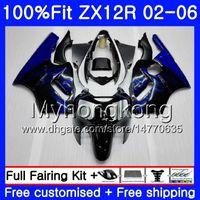 Wholesale zx12r blue for sale - Injection For KAWASAKI NINJA ZX1200 ZX R HM ZX R R CC ZX12R Fairing hot Blue flames