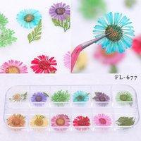 nagellack gemischte farben großhandel-Mix 12 Farben Natürliche Getrocknete Blumen DIY Nail art Blumendekorationen Nail art Dekorationen Polnischen Werkzeug
