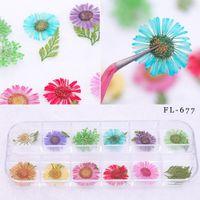 tırnak cilası karışık renkler toptan satış-Mix 12 Renkler Doğal Kurutulmuş Çiçekler DIY Nail Art Çiçek Süslemeleri Nail Art Süslemeleri Polonya Aracı