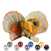 Wholesale Oyster Shells - Wholesale new Akoya High quality cheap love Seawater Red shell pearl oyster 6-7mm red gray light blue pearl oyster with vacuum packaging