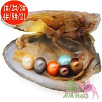 Wholesale oval shell beads - Real Luxury Gift Freshwater Oysters 6-7mm Round Pearls and Oysters Dyed Pearl Shells Vacuum Packed Perfect Round Jewelery DIY Bead Making