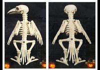 mordaça de osso venda por atacado-Novidade Mordaça Brinquedos Esqueleto do Dia Das Bruxas Corvo 100% De Plástico Esqueleto De Ossos Para Horror Halloween Decoração 2017