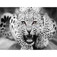 óleo da pintura do leopardo venda por atacado-0329ZC132 Casa parede Deco imagem DIY número pintura a óleo crianças Graffiti branco Calma leopardo pintura animal por números