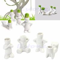 boneca mini para homens venda por atacado-Bonito Novel Bonsai Cabeça Grama Boneca Cabelo Branco Preguiçoso Homem Confiar Planta Jardim DIY Mini