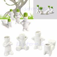 pelo hierba lindo al por mayor-Bonito Novela Bonsai Cabeza Césped Muñeca Pelo Blanco Lazy Man Rely Planta Jardín DIY Mini