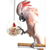 spielzeug für papageien groihandel-Pet Birds Toys Lebensmittelboxen Futtersuche Balls Futtersuche Papageien Fütterung Geräte