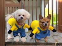kostüm köleleri toptan satış-Küçük Köpek Kedi Giysileri Minions Karikatür Sevimli Hoodie Pet Yenilik Kostüm Köpek Giysileri Köpekler Kediler Kış Autunm Sıcak Coat