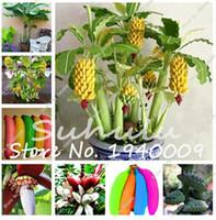 Desconto Plantacao De Arvores Frutiferas 2019 Plantacao De