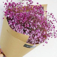 Wholesale Colorful Rose Bouquet - Hot Selling Colorful Babysbreath Flowers Seeds Plant Garden Beautiful Plants seeds Plantlet Garden Home Fragrant Wedding Accessories
